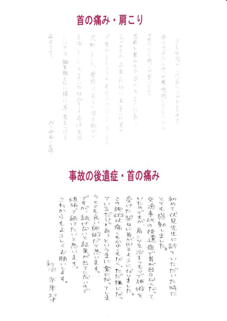 IMG_20130930_0013